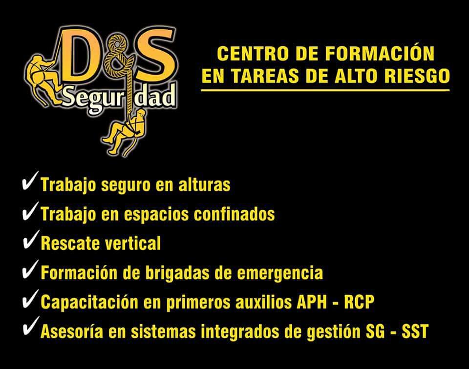 D&SSEGURIDAD S.A.S Cali