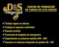 Logotipo de empresa D&SSEGURIDAD S.A.S